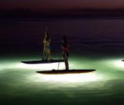 paddle-surf-night2