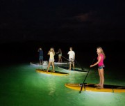 paddle-surf-night3